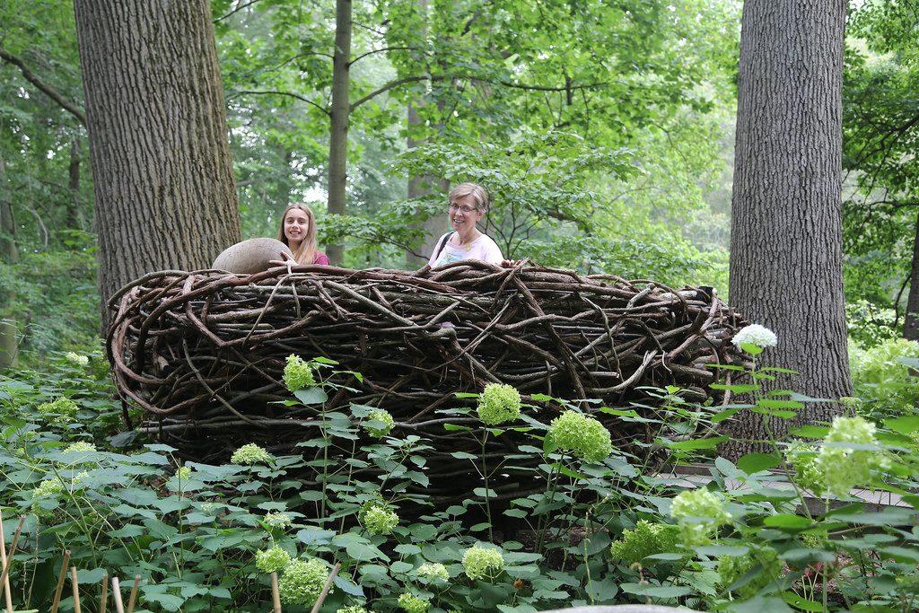 giant bird nest